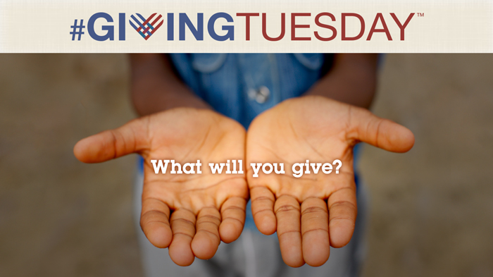 Giving Tuesday Orchids Of Light Foundation