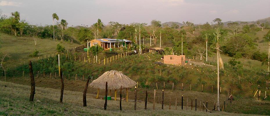Farm with fence